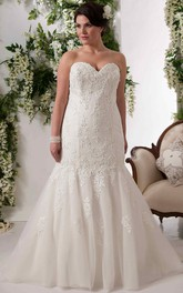 Sweetheart Lace Appliques Tulle plus size Dress With Court Train And Corset Back