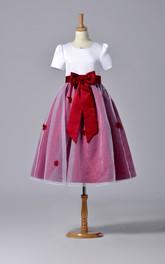 Pleated Bowknot High-Neckline Short-Sleeve Organza Dress