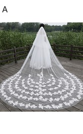 New Korean Ethereal Extra Long Tailed Wedding Veil with Lace Appliques